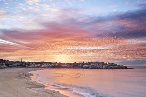Shepherds Warning Bondi Beach cf007044