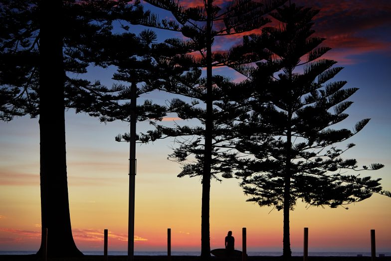 Manly Pine Sunrise Aquabumps 5o0a9447