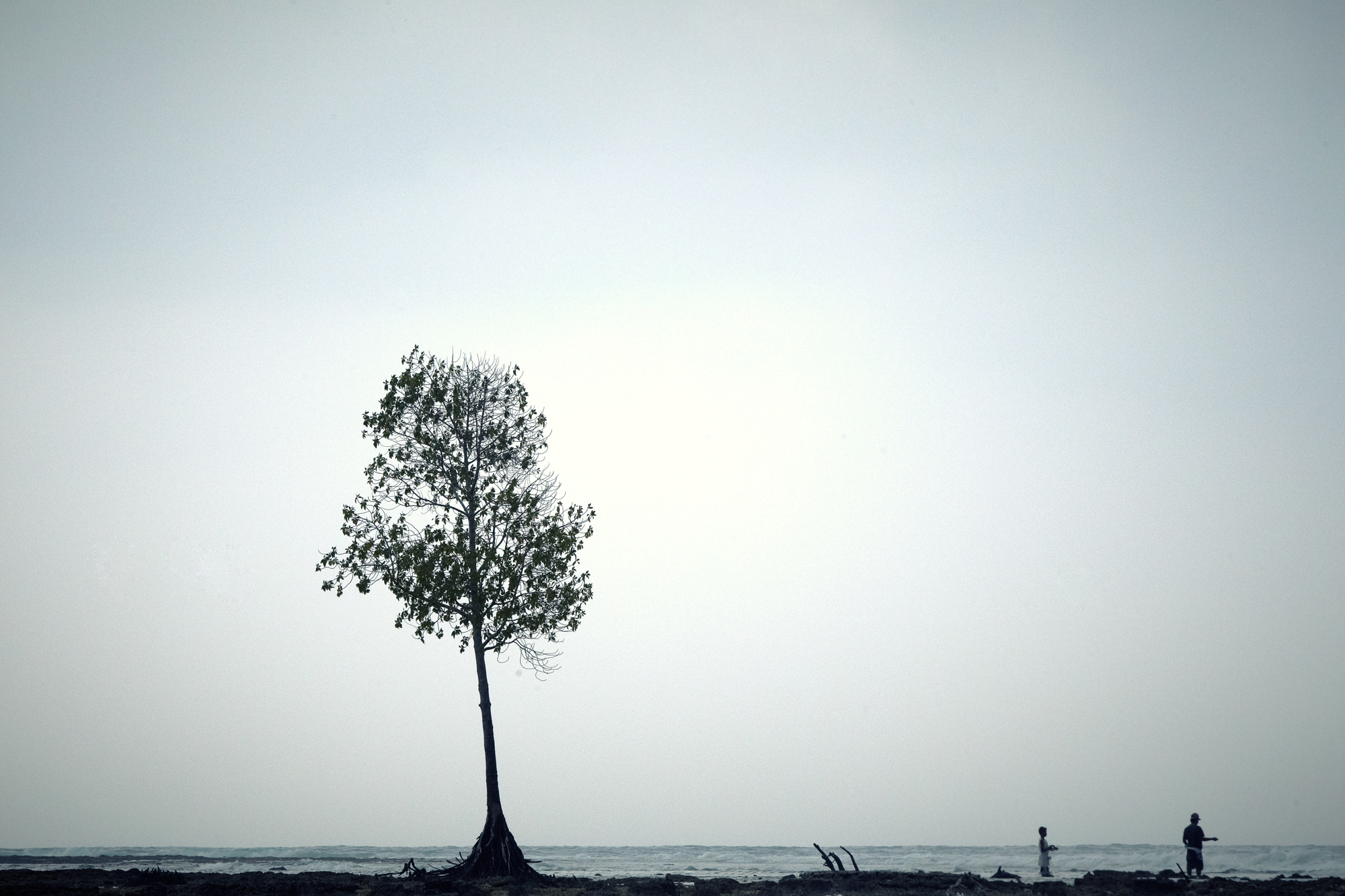 Lone Tree Aquabumps a91g3043