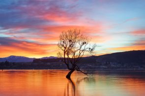Wanaka Colours Aquabumps cf007101
