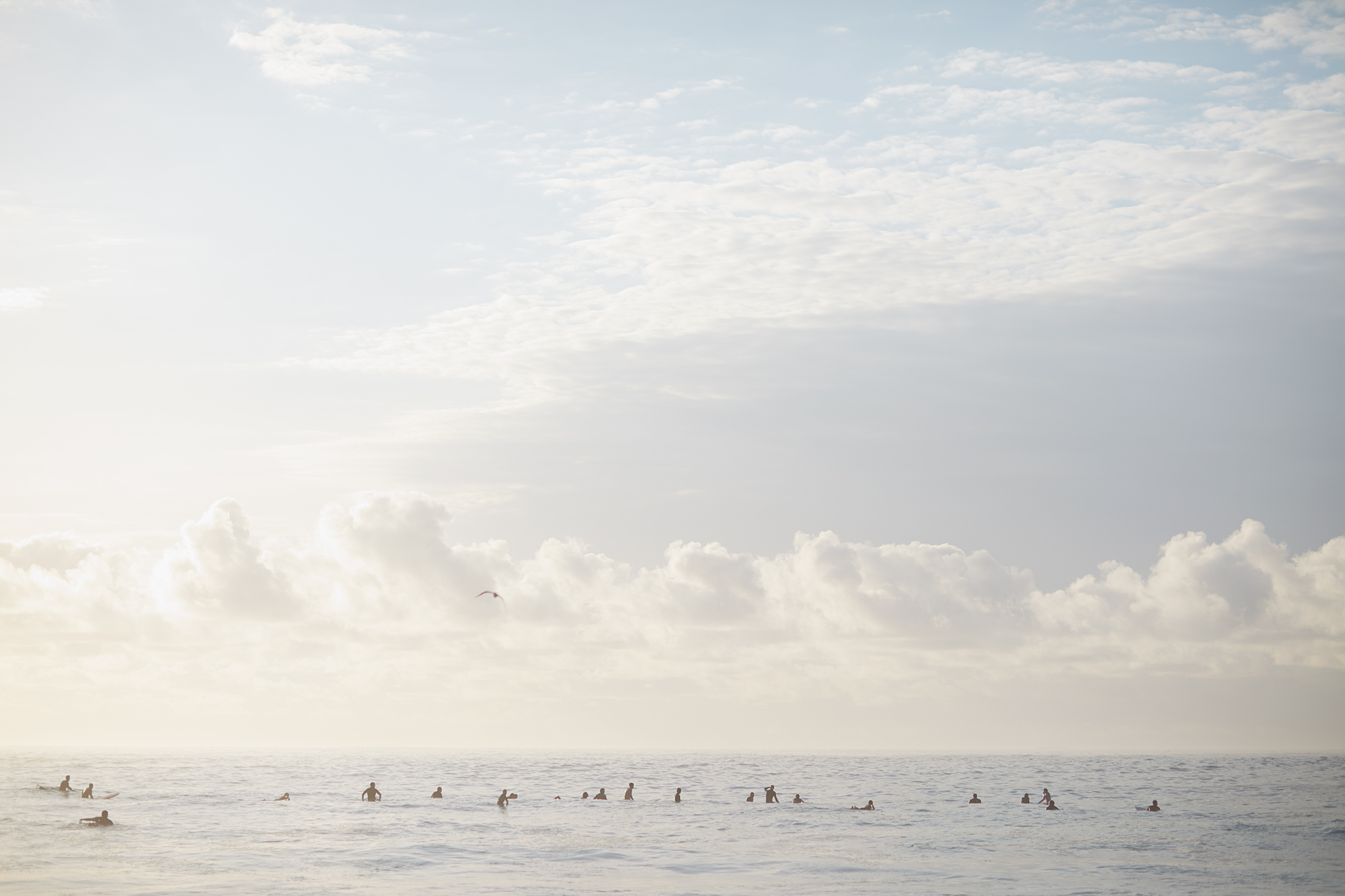 White Out Aquabumps s1a9246