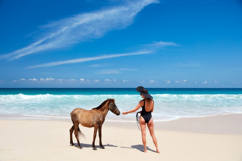 When the surf is flat, take your pony for a walk