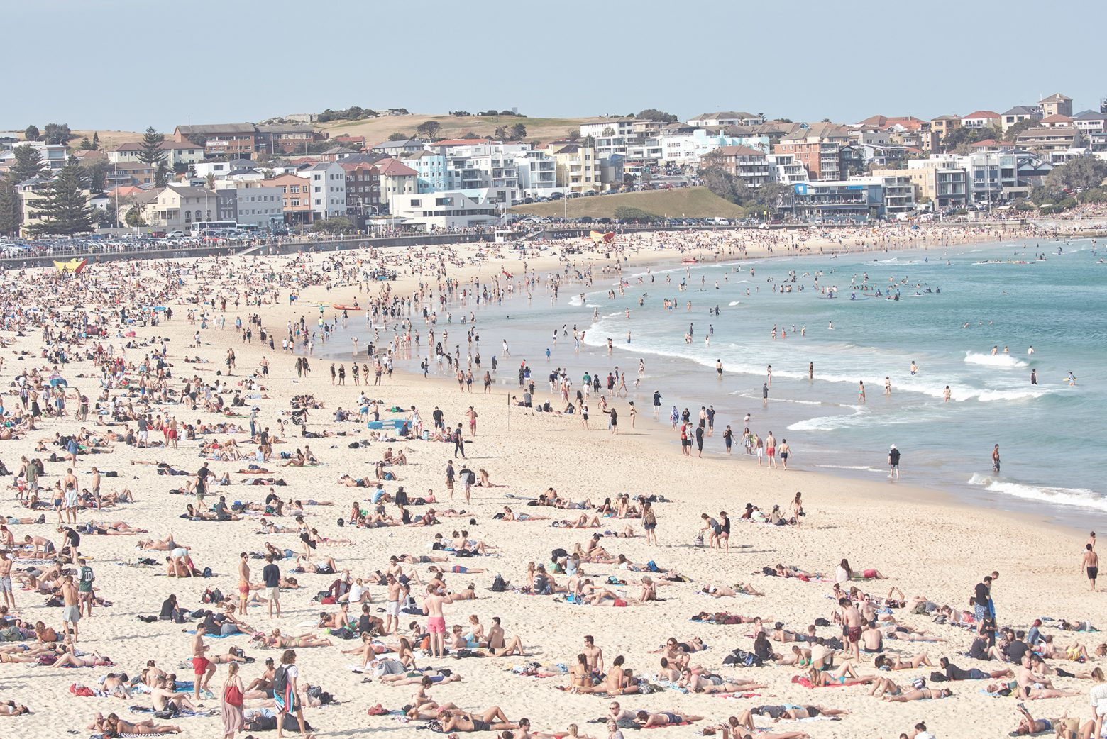 Bondi beach, 900 metres of humans
