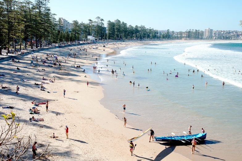 Manly Beach, love those trees