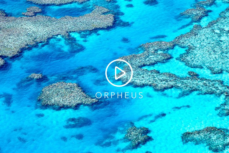 Watch a 1 minute tour of Orpheus Island