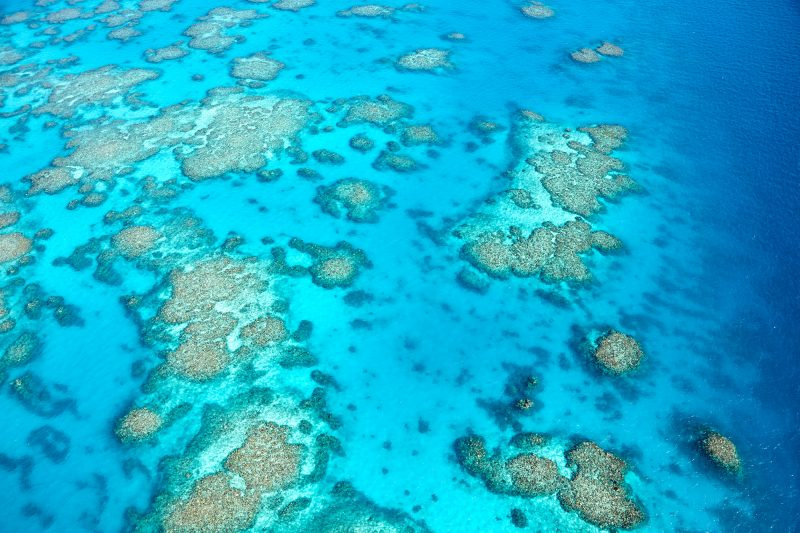 The jaw dropping Great Barrier Reef
