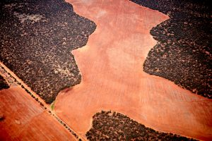 Red dirt of Oz