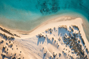 We're heading to this beach tomorrow...Ningaloo, WA
