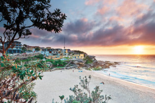 Good morning Tamarama