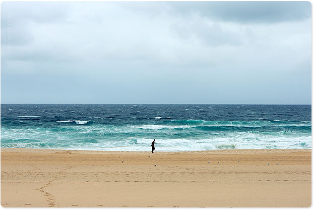 Forget surfing until this howling wind dies down...