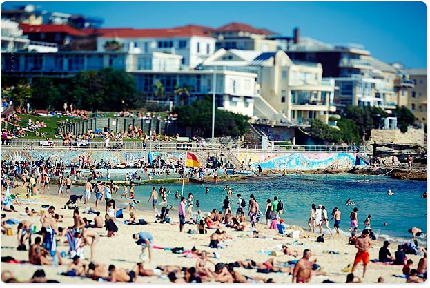 Saturday was a cracker down at North Bondi