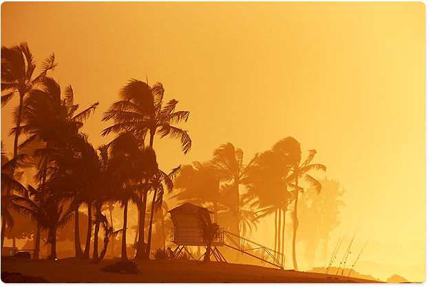 Big swell mist all lit up at sunset, North Shore of Hawaii